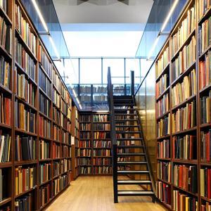 Библиотеки Оловянной